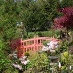 garden_1341398452